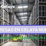 Empresas en Celaya Nuevas