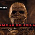Momias de Celaya