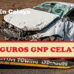 Seguros GNP Celaya